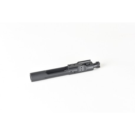 Bolt Carrier Group- NP3 Coated Carrier, Bolt and Cam Pin